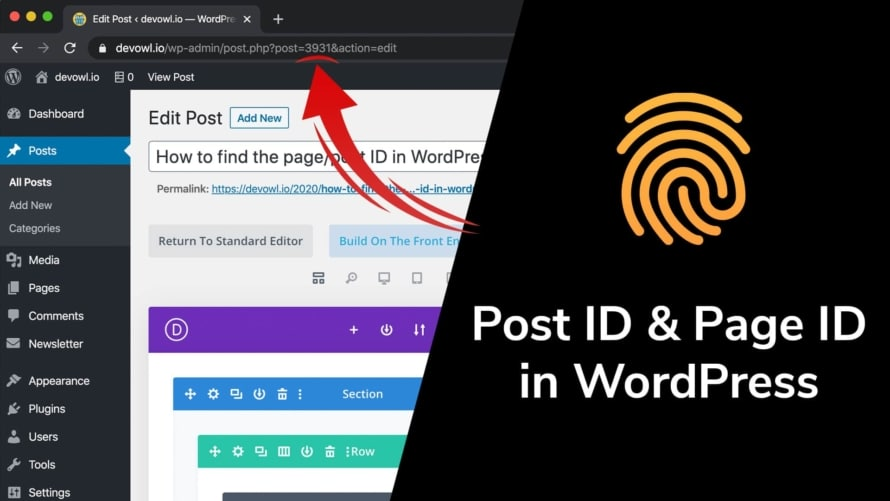 Post ID and Page ID in WordPress