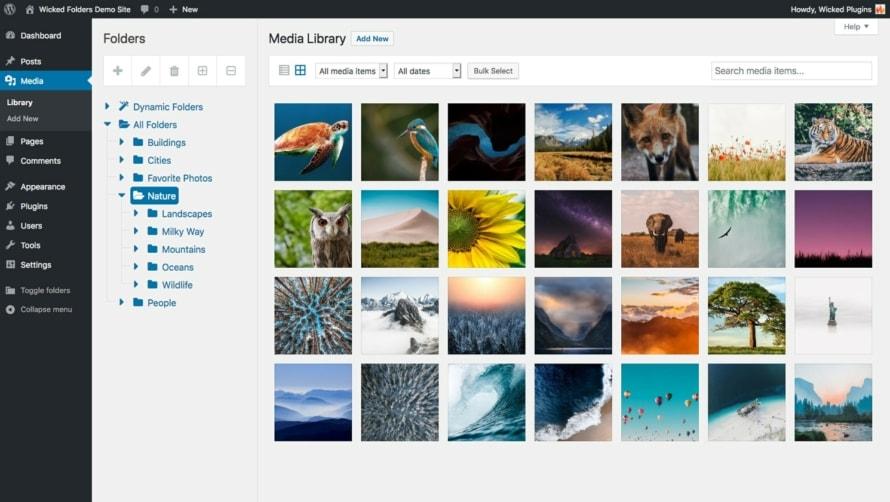 Folder overview in WordPress media library