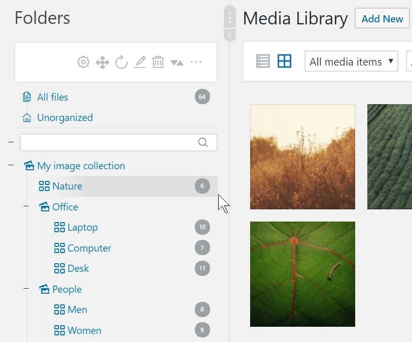 Create collections and galleries